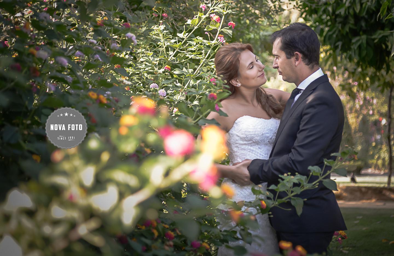Arlete e Sérgio na sessão fotográfica após casamento img1