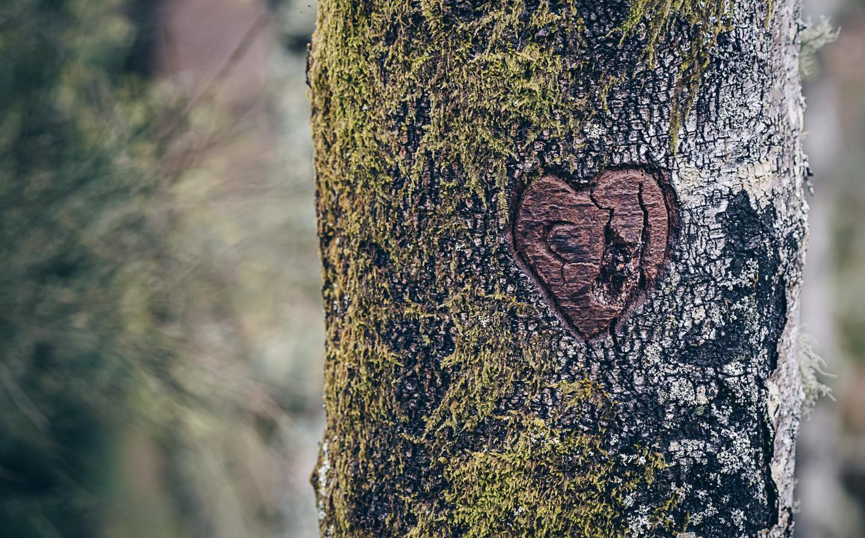 Noémie e Cristiano o coração
